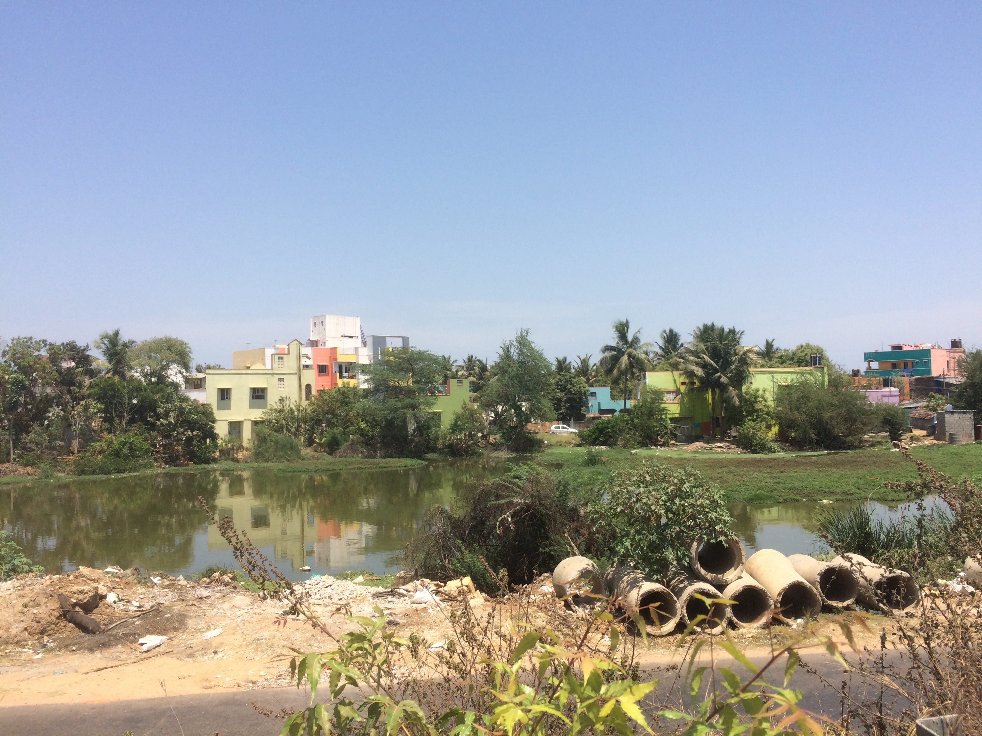 Temple pond in Pattaraivakkam, Korattur
